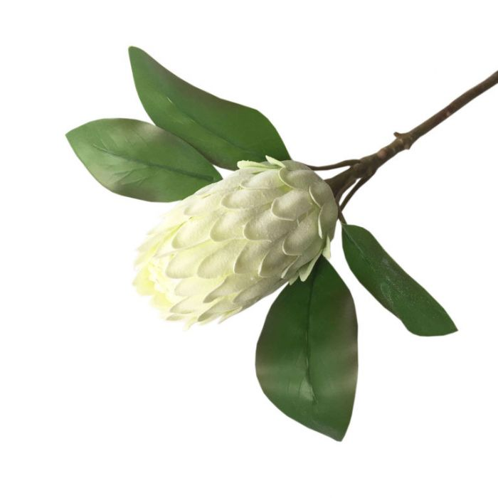 FP Collection Artificial Protea Ice Stem White  ] 182688 - Flower Power