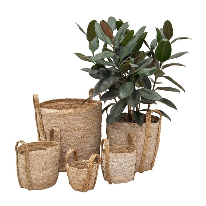 FP Collection Cabo Planter Basket  ] 184059P - Flower Power