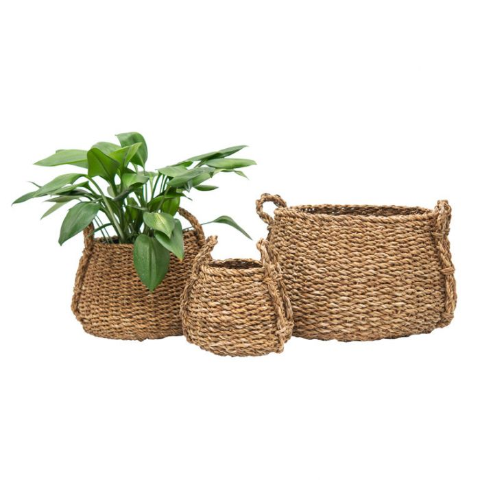 FP Collection Malawi Planter Basket  ] 184421P - Flower Power