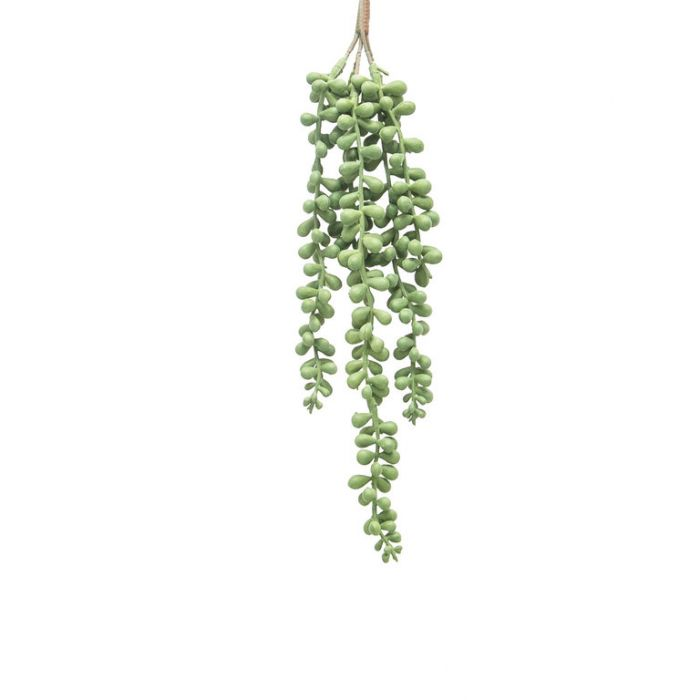 FP Collection Artificial Hanging Bean Leaves  ] 184461P - Flower Power