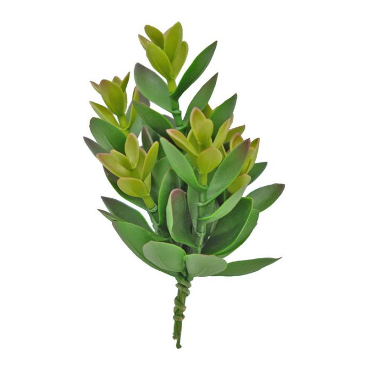 FP Collection Artificial Succulent Crassula  ] 184472 - Flower Power