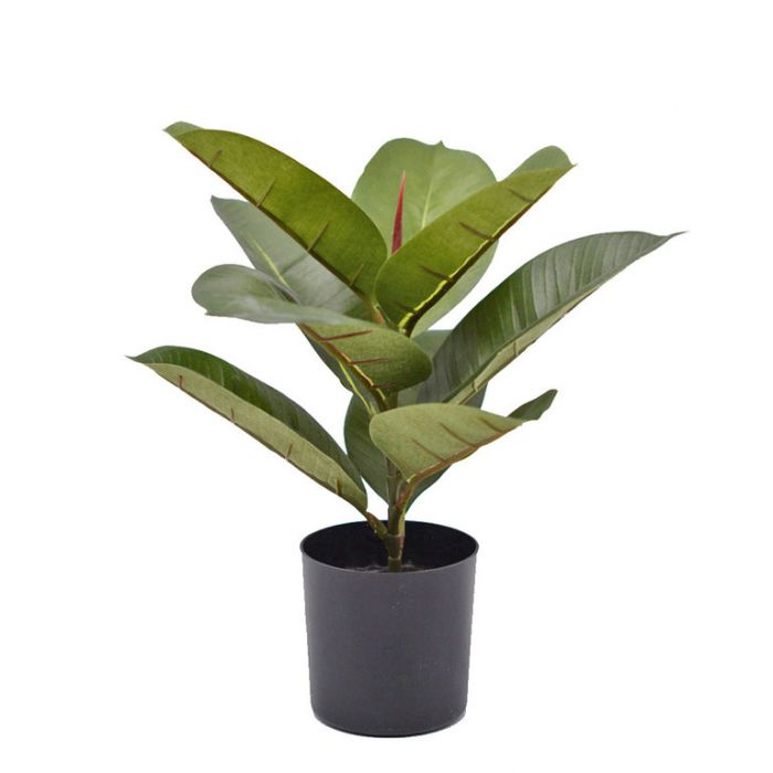 FP Collection Artificial Potted Ficus Rubber Plant  ] 184474 - Flower Power