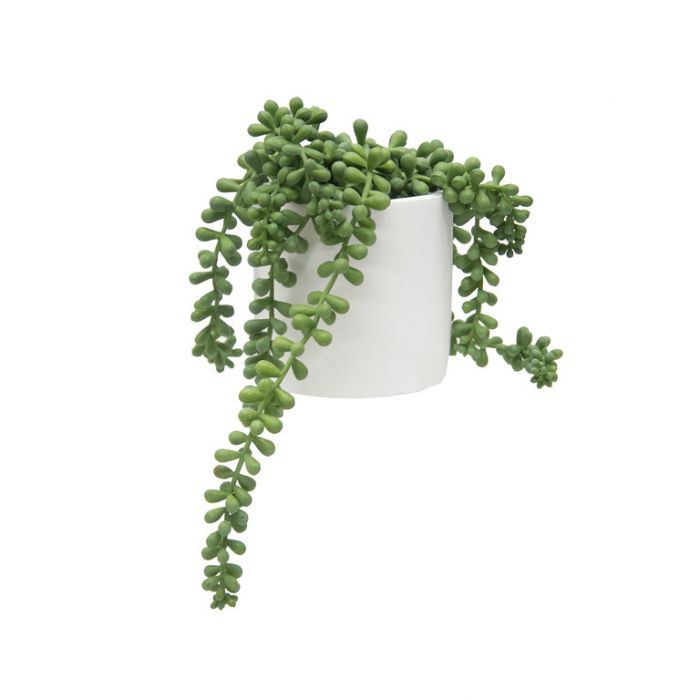 FP Collection Artificial Potted Hanging Bean Leaves  ] 184484 - Flower Power