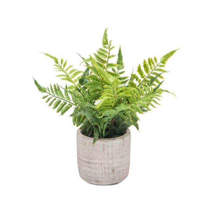 FP Collection Artificial Potted Autumn Fern  ] 184485 - Flower Power