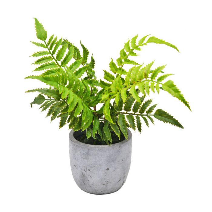 FP Collection Artificial Potted Leather Fern  ] 184489 - Flower Power