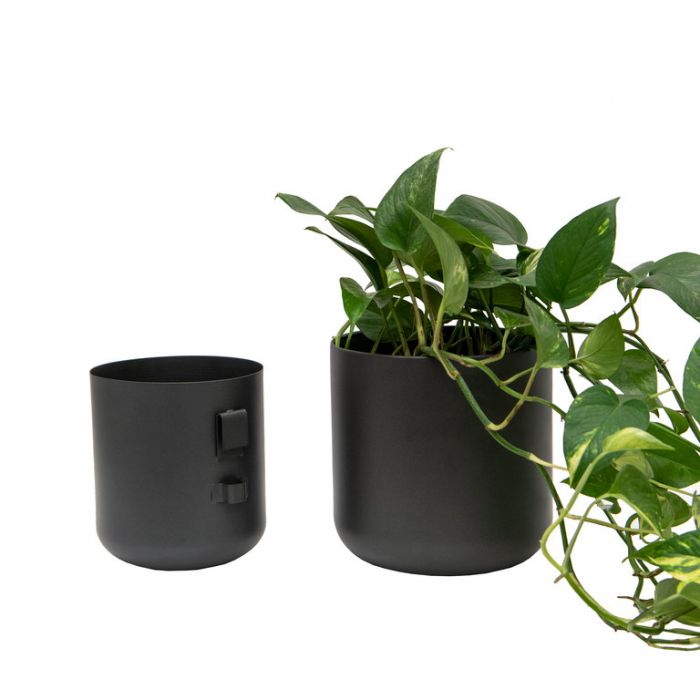 FP Collection Azra Wall Planter Charcoal  ] 184551P - Flower Power