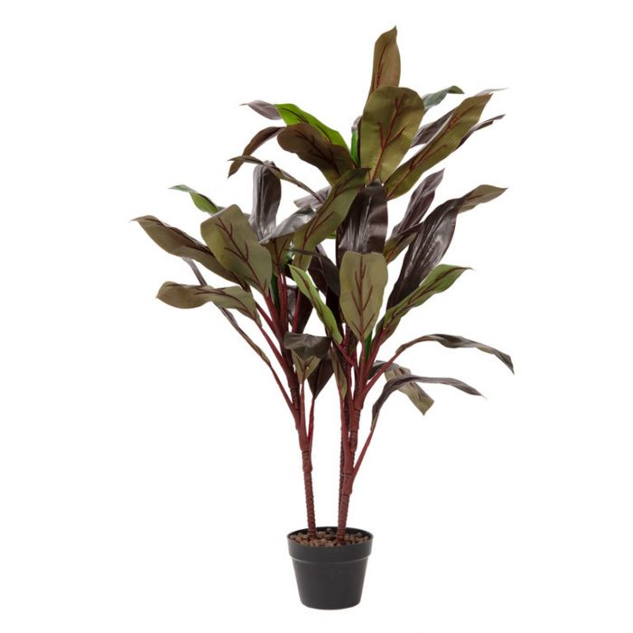 FP Collection Artificial Dracaena Potted  ] 184801 - Flower Power