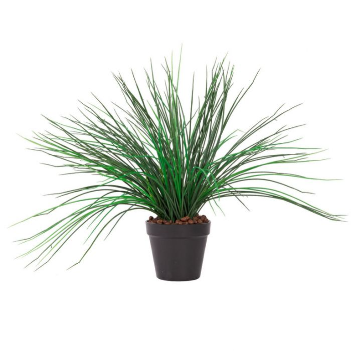 FP Collection Artificial Grass Potted  ] 184803P - Flower Power