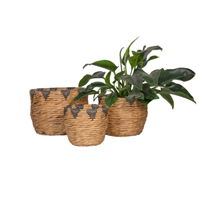 FP Collection Cherokee Planter Basket  ] 185311P - Flower Power
