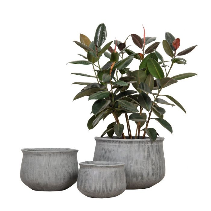 FP Collection Pacific Planter Grey  ] 185726P - Flower Power
