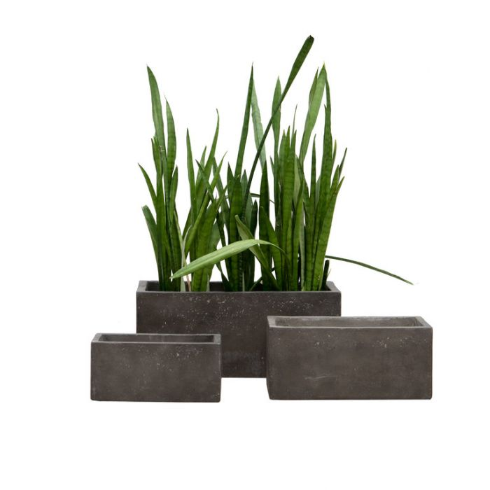 FP Collection Soho Cement Trough Lava Stone  ] 185902P - Flower Power