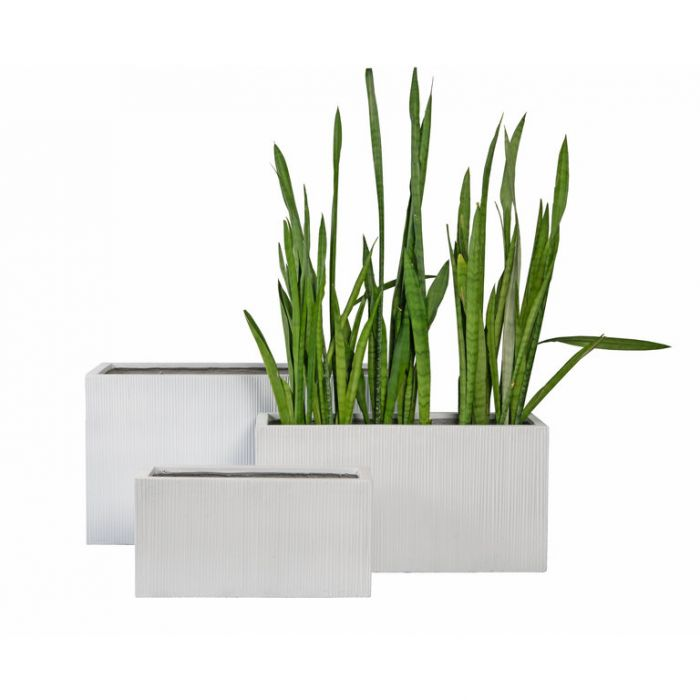 FP Collection Southport Trough White  ] 185959P - Flower Power