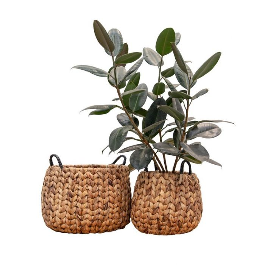 FP Collection Harvest Basket Natural  ] 189122P - Flower Power