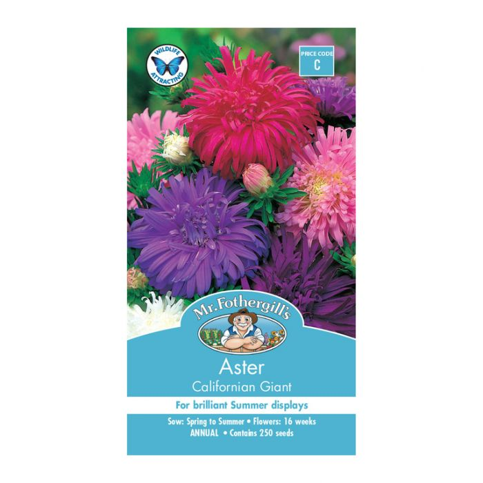 Mr Fothergill's Aster Californian Giant  ] 5011775000060 - Flower Power