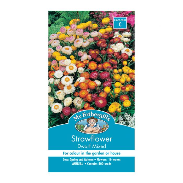 Mr Fothergill's Strawflower Dwarf Mixed  ] 5011775000268 - Flower Power
