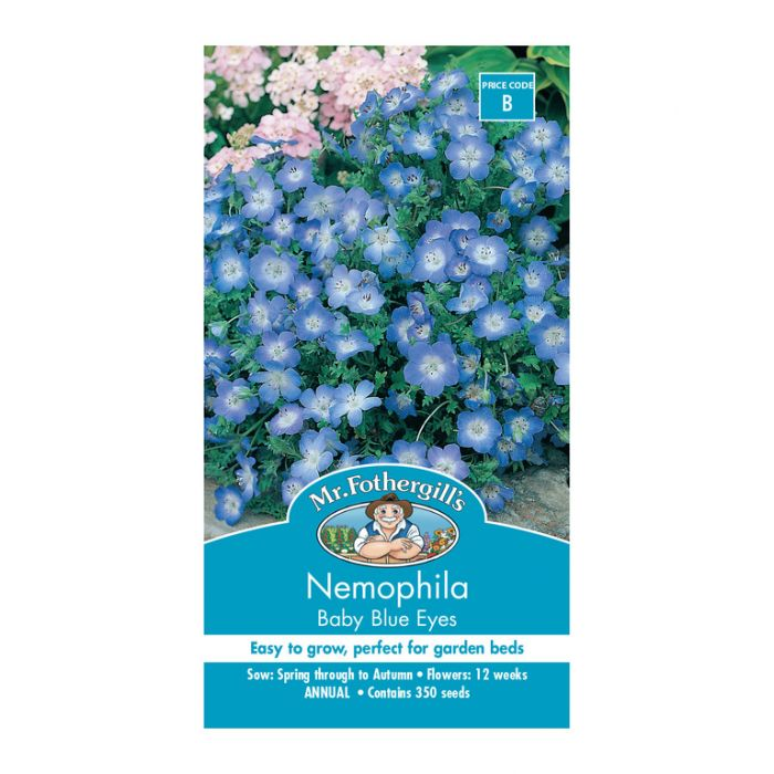 Mr Fothergill's Nemophila Baby Blue Eyes  ] 5011775001685 - Flower Power