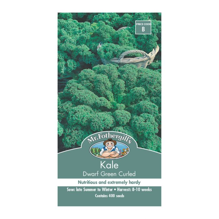 Mr Fothergill's Kale Dwarf Green Curled  ] 5011775002040 - Flower Power