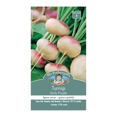 Mr Fothergill's Turnip Early Purple  ] 5011775002651 - Flower Power