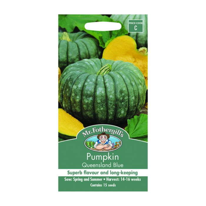 Mr Fothergill's Pumpkin Queensland Blue  ] 5011775003900 - Flower Power