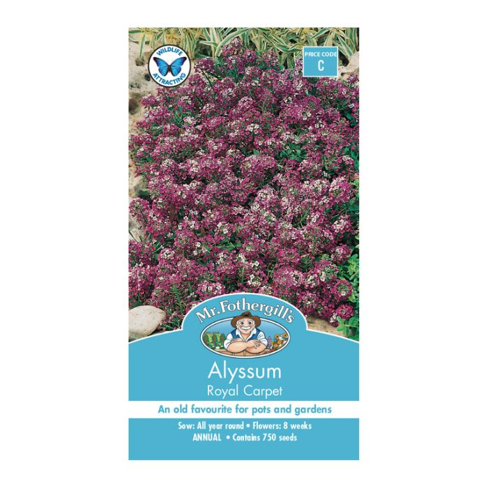 Mr Fothergill's Alyssum Royal Carpet  ] 5011775011271 - Flower Power