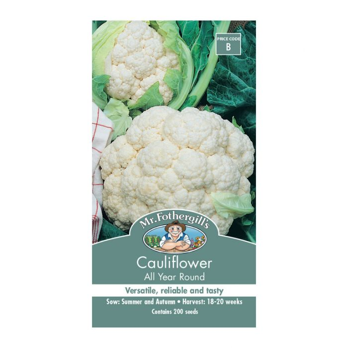 Mr Fothergill's Cauliflower All Year Round  ] 5011775011875 - Flower Power