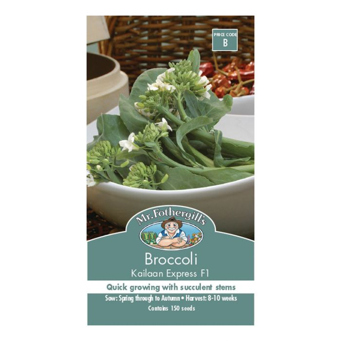 Mr Fothergill's Broccoli Kailaan Express  ] 5011775054100 - Flower Power
