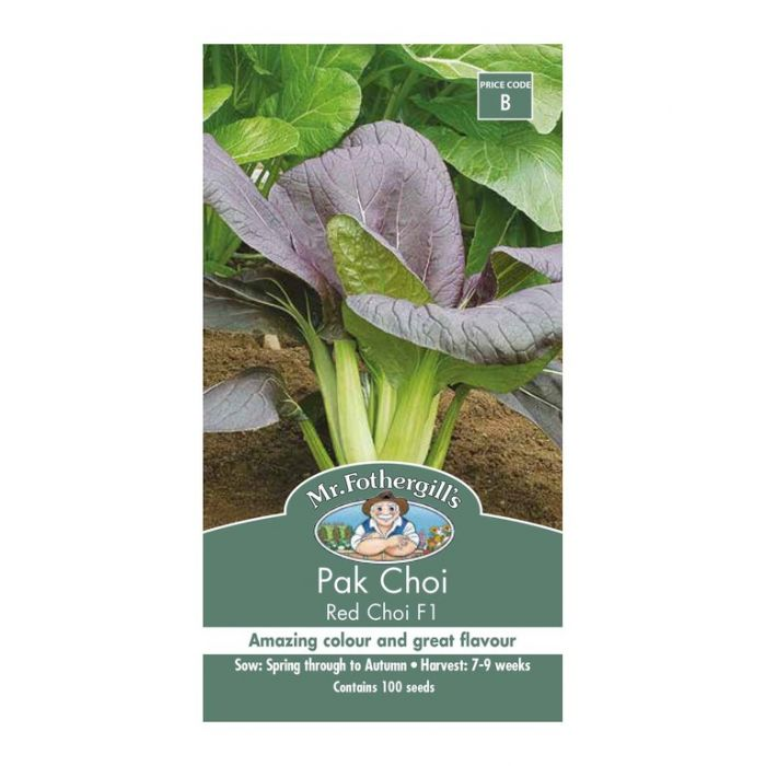Mr Fothergill's Pak Choi Red Choi F1  ] 5011775058511 - Flower Power