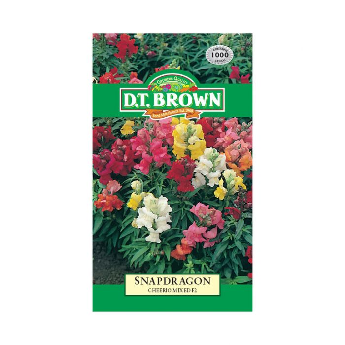 D.T. Brown Snapdragon Cheerio Mixed F2  ] 5030075000242 - Flower Power