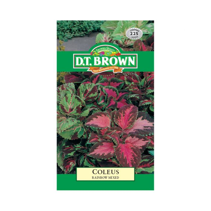 D.T. Brown Coleus Rainbow Mixed  ] 5030075004851 - Flower Power