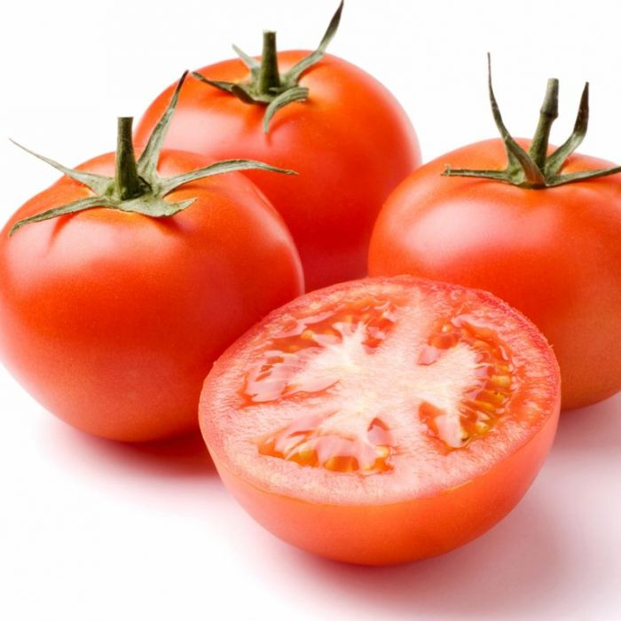 Tomato Apollo  ] 7581000100P - Flower Power
