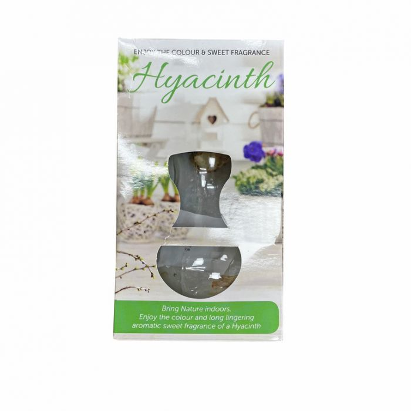 Hyacinth Vase Kit White  ] 8714759006030 - Flower Power