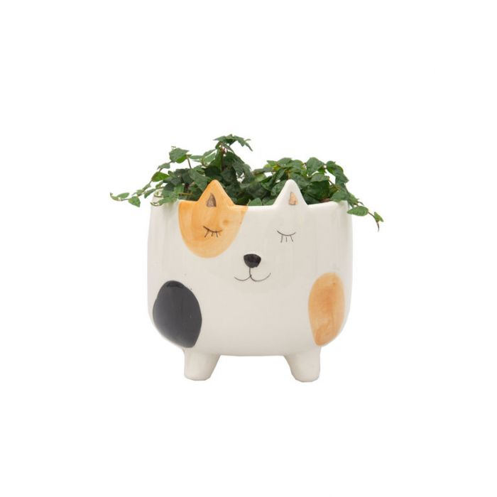 Living Trends Ginger Cat Planter  ] 9023019999 - Flower Power