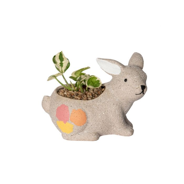 Living Trends Bunny Pastel Planter  ] 9034929999 - Flower Power