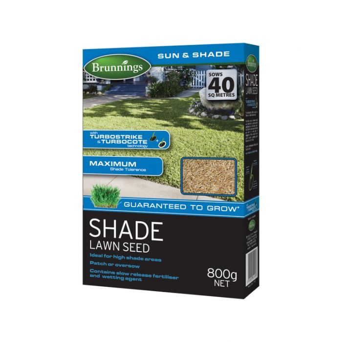 Brunnings Shade Lawn Seed  ] 9310522001418 - Flower Power