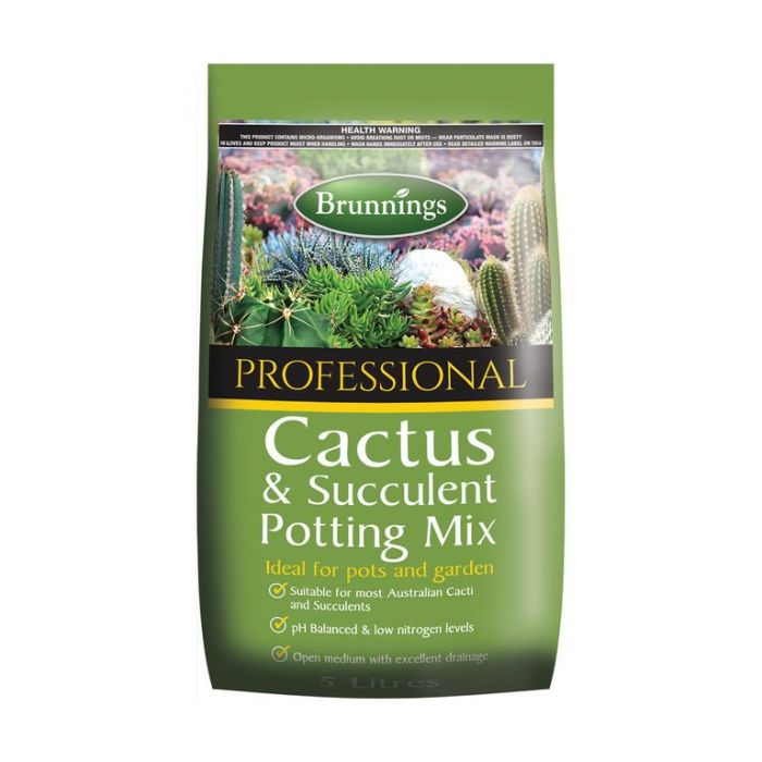 Brunnings Cactus & Succulent Mix  ] 9310522050690 - Flower Power