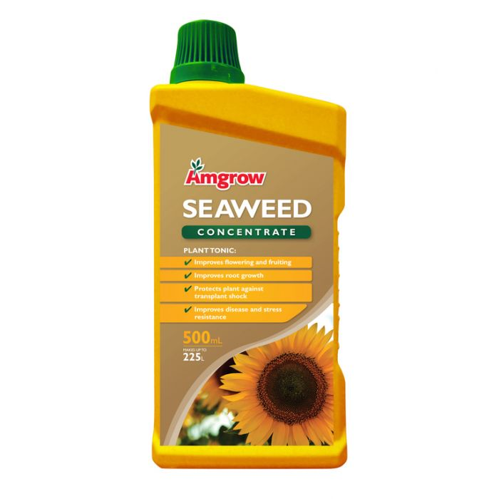 Amgrow Seaweed Concentrate  ] 9310943602218P - Flower Power