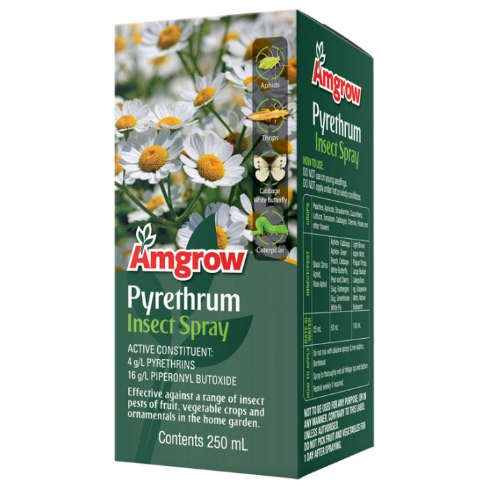 Amgrow Pyrethrum Insect Spray  ] 9310943820407 - Flower Power