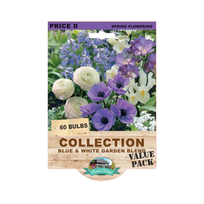Blue & White Garden Blend  ] 9315774071233 - Flower Power