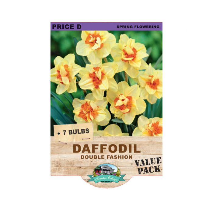Daffodil Double Fashion  ] 9315774071240 - Flower Power
