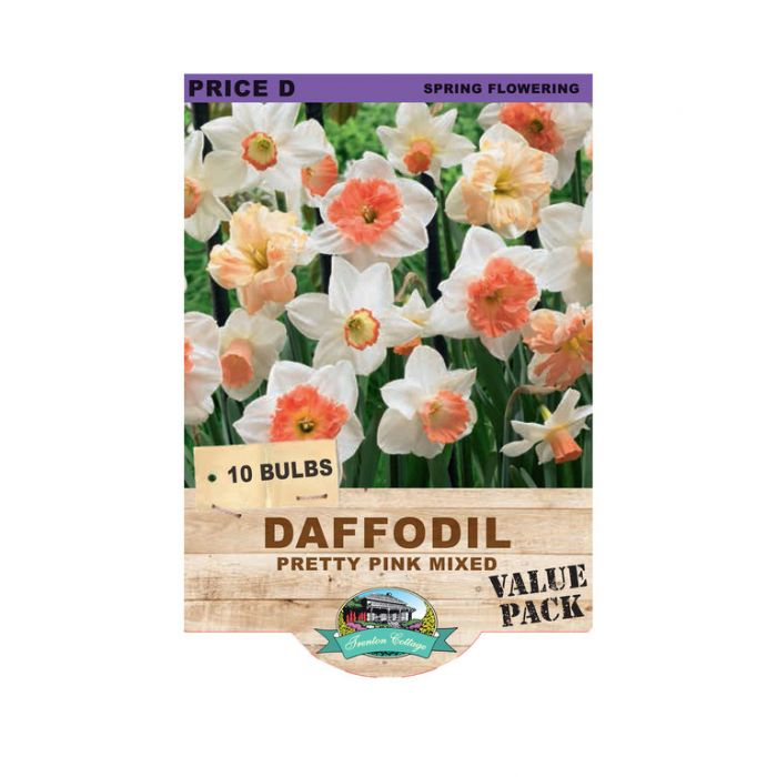 Daffodil Pretty Pink Mix  ] 9315774071257 - Flower Power