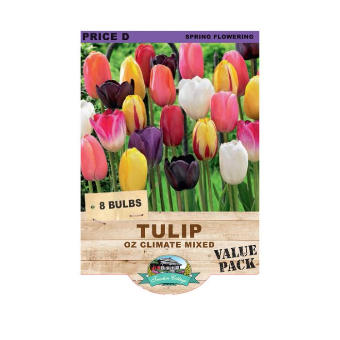Tulip Oz Climate Mixed  ] 9315774071394 - Flower Power
