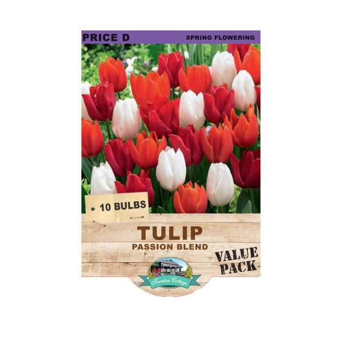 Tulip Passion Blend  ] 9315774071424 - Flower Power