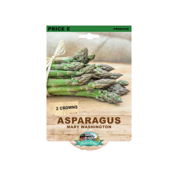 Asparagus Mary Washington  ] 9315774071837 - Flower Power