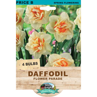 Daffodil Flower Parade  ] 9315774075071 - Flower Power