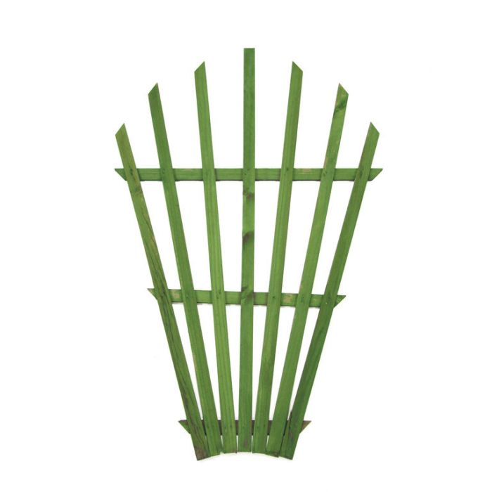 Fantail Lattice Green  ] 9322606001658P - Flower Power