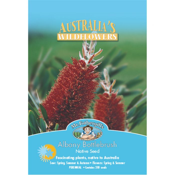 Mr Fothergill's Albany Bottlebrush  ] 9324190057561 - Flower Power