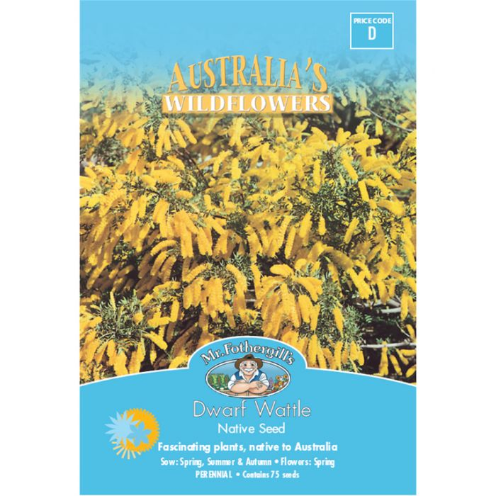 Mr Fothergill's Dwarf Wattle  ] 9324190057639 - Flower Power