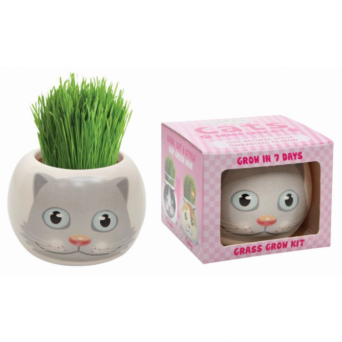 Grass Hair Kit Cats - Smokey  ] 9324190096089 - Flower Power