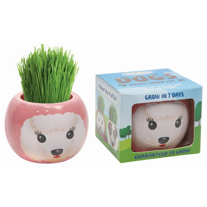 Grass Hair Kit Dogs - Poodle  ] 9324190096102 - Flower Power