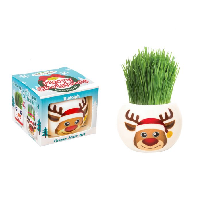 Grass Hair Kit Christmas - Rudolph  ] 9324190096720 - Flower Power